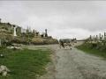 irlandreise016.jpg