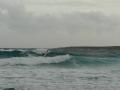 punta prima, windsurf.jpg