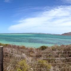 Langebaan Shark Bay