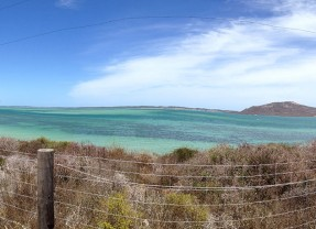 Langebaan Shark Bay